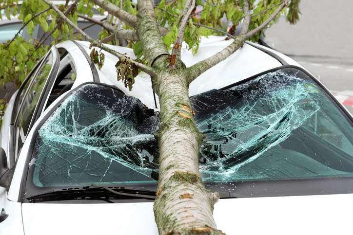 Repairing Storm Damage: What Happens, and Who Pays?