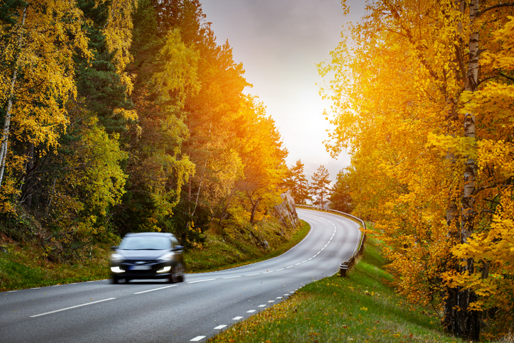 Driving Safely in Fall Weather